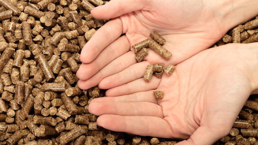 La importancia de comprar pellet homologado